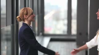 Profile of two attractive blonde businesswoman shaking hands