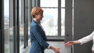 Profile of two attractive female advertising executives shaking hands