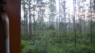 The view of Nuwara Eliya landscape from a moving train, Sri Lanka