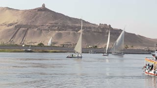 Traditional felucca boats sailing on the Nile river