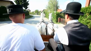 Two men sitting on horse drawn carriage on road