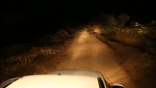 View from the car roof while ride through dark road in Jodhpur.