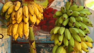 View of bananas hanging in local shop in Mirissa, Sri Lanka.
