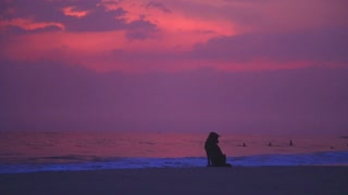 View of Hikkaduwa beach at sunset with dog sitting looking at the waves
