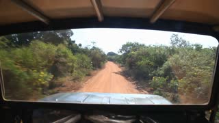 View through the window of a jeep during a safari in Yala National Park.