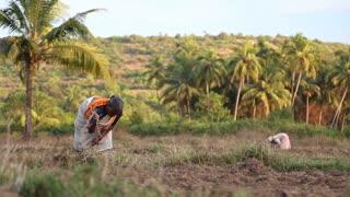 Woman picking dry grass on an open field.