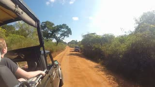 YALA NATIONAL PARK, SRI LANKA - MARCH 2014: View from moving Jeep during safari in Yala National Park.