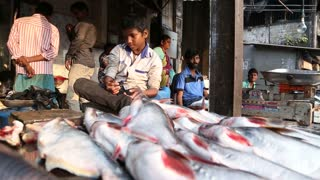 Young child sitting on fish stand on the streets of Mumbai, India.