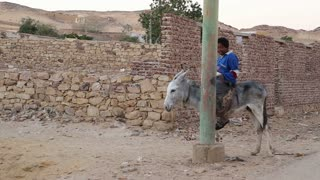 Young local boy riding a donkey