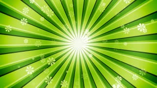 Green Sun Burst Flowers