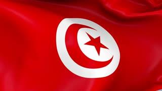 Tunisia Waving Flag Background Loop
