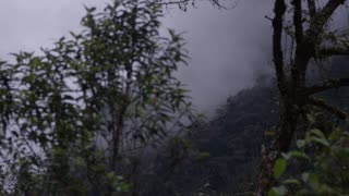 Ecuador driving through foggy mountains 1