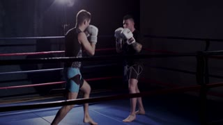 Mixed Martial Arts Fighters Training and Practicing in Ring