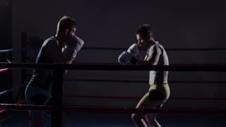 Mixed Martial Arts - Sparring Kick Boxing