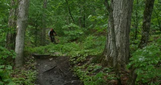 Mountain bike rider racing down forest path