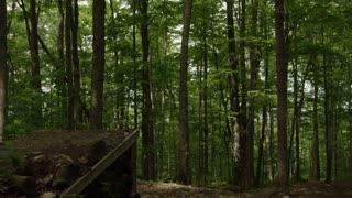 Mountain Biker Racing down Path and jumping logs
