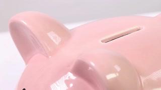 Putting a quarter into a piggy bank close up macro