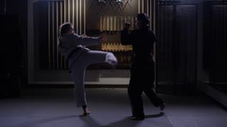 Martial arts kicks from female athletes