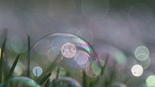 Slow motion bubbles in nature background abstract crisp clear soapy blown spheres