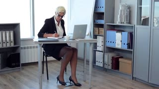 Business Woman in the Office Workplace