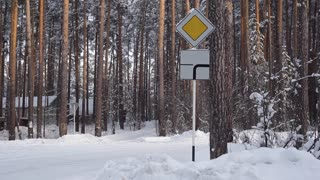 Road Sign a Priority Road in Snowy Forest