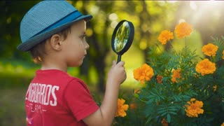 Boy with magnifying glass exploring flowers