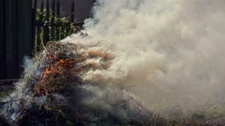 Burn Dry Grass with smoke