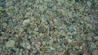 Stones Under Water- Looped