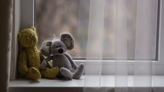 Toys on the Windowsill
