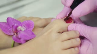Pedicure with a orchid flower