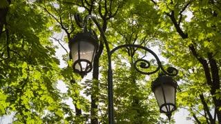 Vintage Lanterns in Park