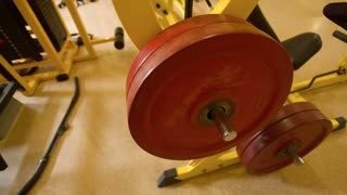 weight equipment at the gym