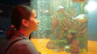 Woman watch Fishes at aquarium