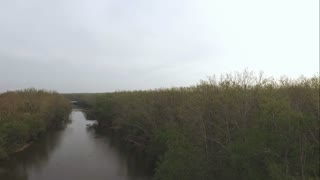 Aerial view from stream to above forest tree line