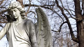 Angel statue in woods pan shot