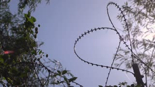 Barbwire along fence in sunshine 4k