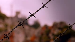Barbwire at prison camp