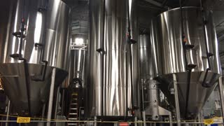 Beer brewing distillery equipment