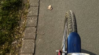 Bicycle path tire view going down path 4k