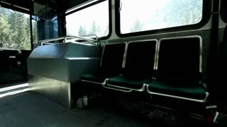 Bus goes from stop to moving position in woods