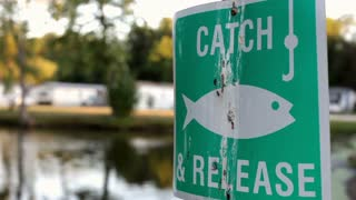 Catch and release sign at pond