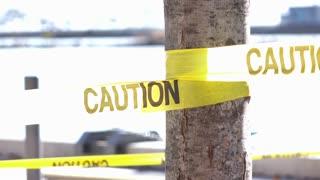 Caution tape wrapped around tree blocking off area 4k