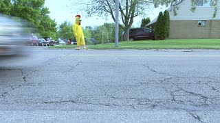 Chicken Crossing Road