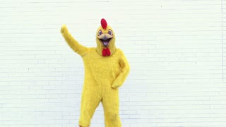 Chicken Doing Popular Dance Moves