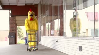 Chicken Pushing Shopping Cart