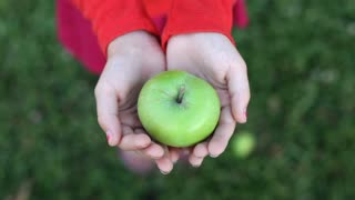Child holding Green Apple in hand