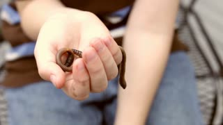 Child holding Worms in Hand
