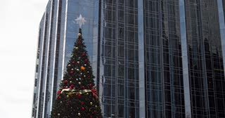 Christmas Tree in city with office building in background 4k