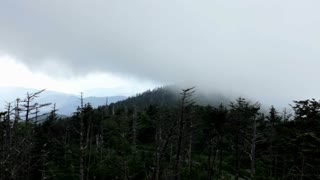 Cloud Smoke in Forest on Mountain
