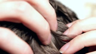 Combing through hair on Male head